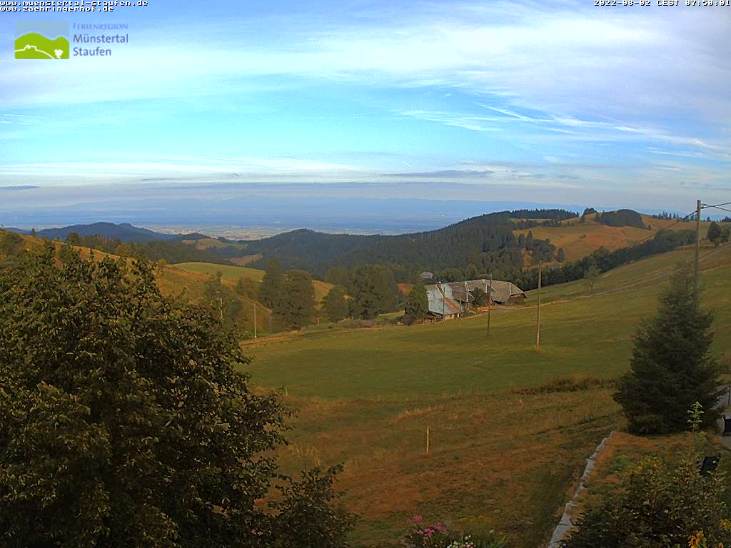 Webcam Zähringerhof